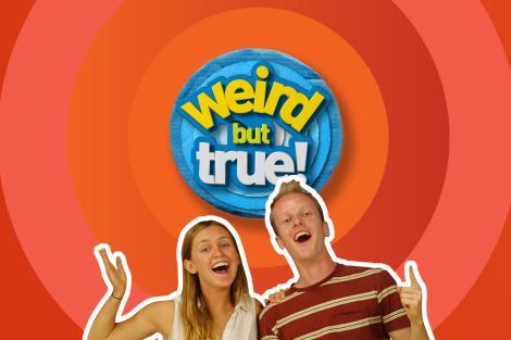 Weird but true show